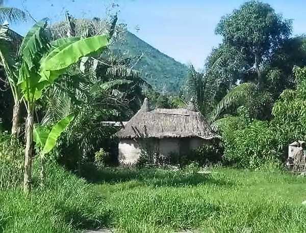 Case en Nouvelle Guinée