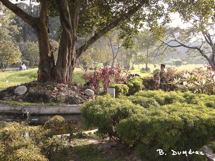 Maiden Park