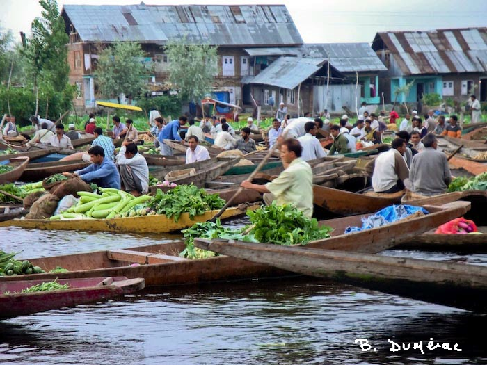 Marché flottant Srinagar