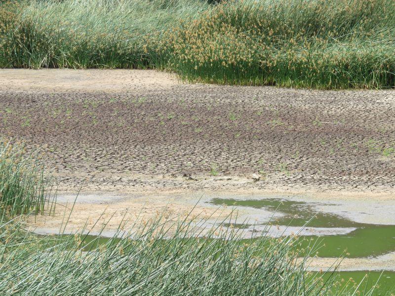 lac de Rano Raraku