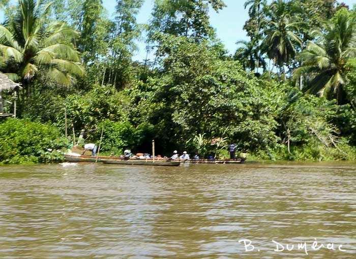 Bords du fleuve