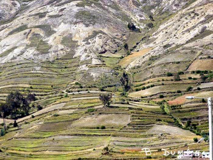 paysage Cuenca 10