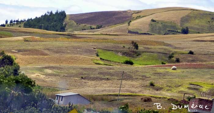Paysage Cuenca 7