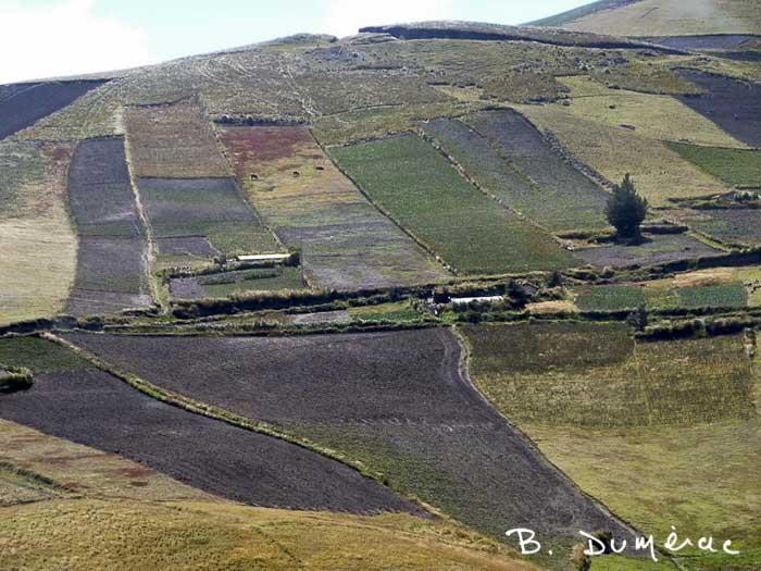 paysage Sud Équateur 4