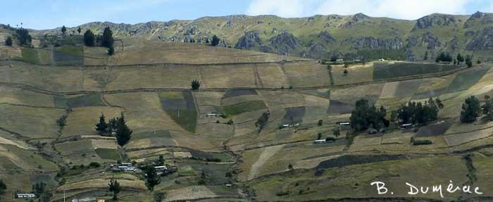 paysage Sud Équateur 2