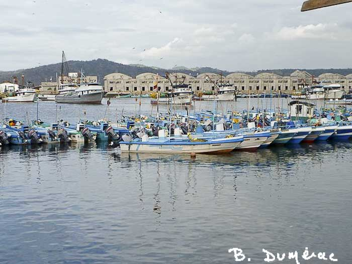Port Esmeraldas