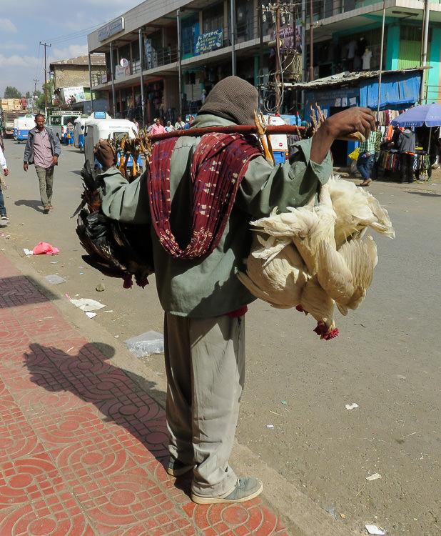 Marchand poulets Gondar