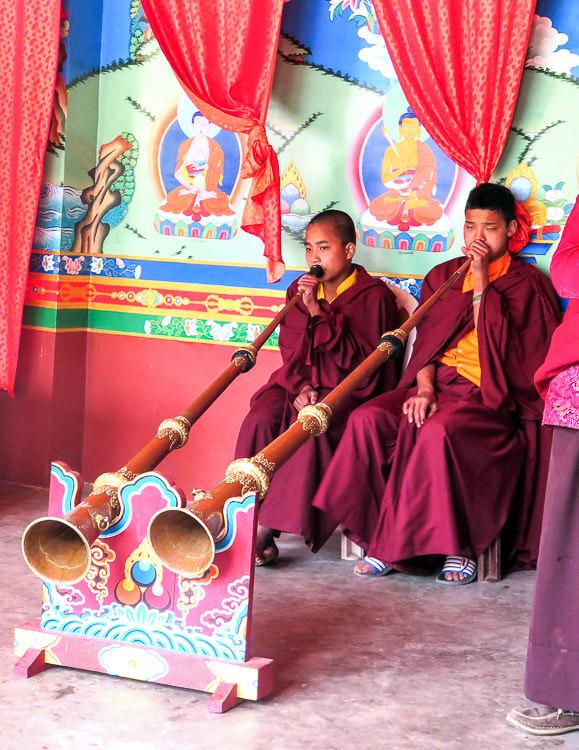 Phodong 6