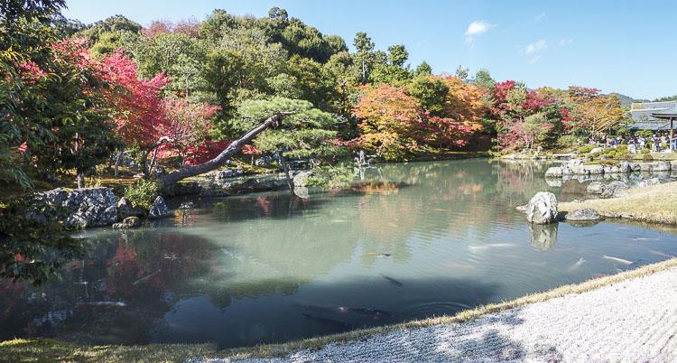 Arashiyama Tenryu-ji 10