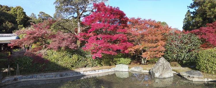 Arashiyama Kokedera 13