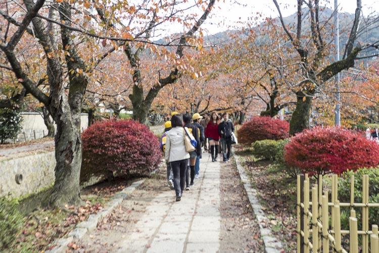 Kyoto Chemin philosophes