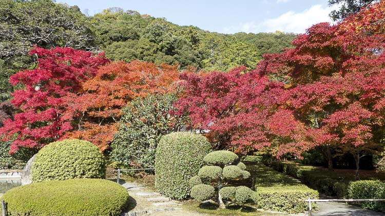 Arashiyama Tenryu-ji 9