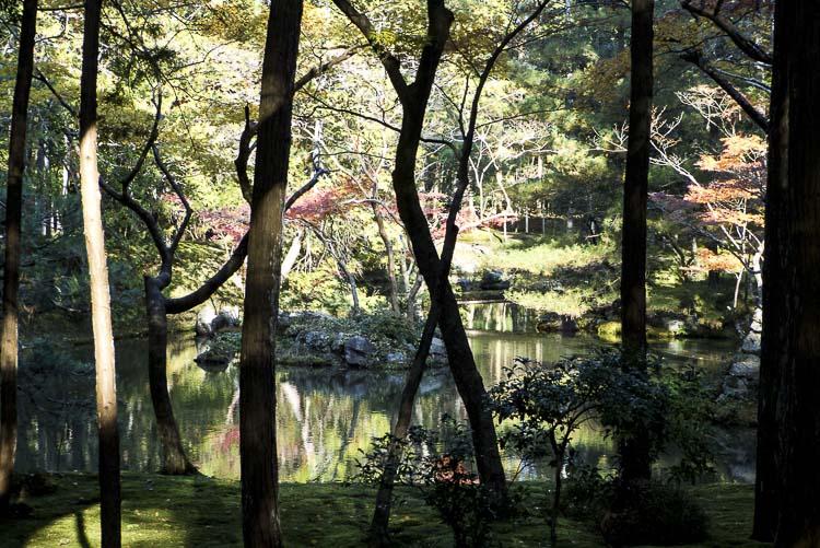 Arashiyama Kokedera 11