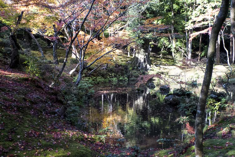 Arashiyama Kokedera 12