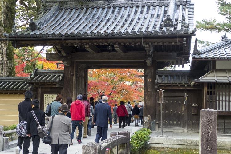 Kinkaku-ji 2