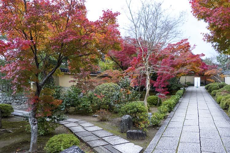 Daitoku-ji 7