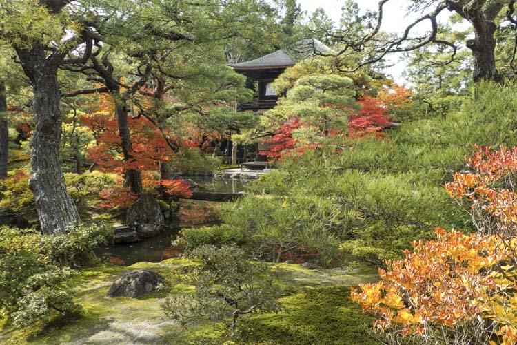 Kyoto_Pavillon argent 8