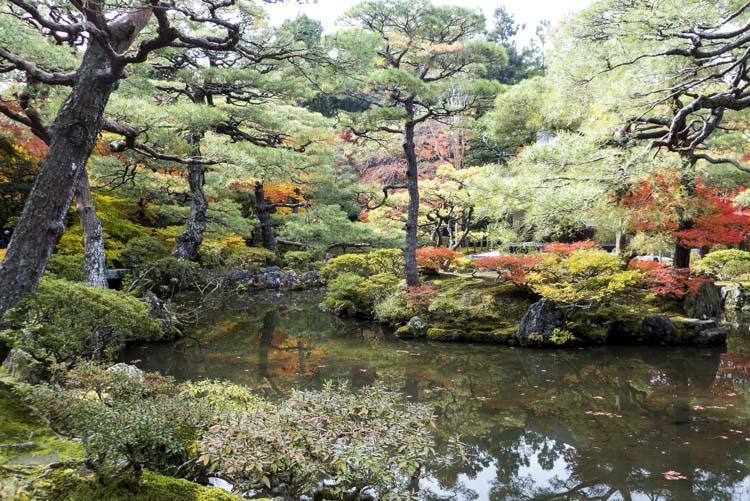Kyoto_Pavillon argent 9