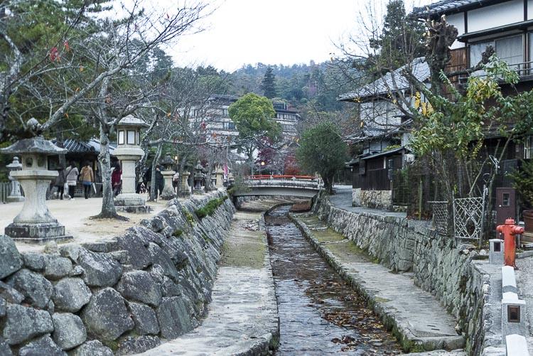 Miyajima 12