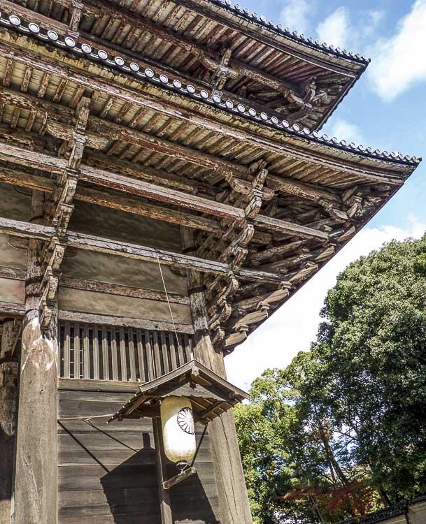 Nara 10