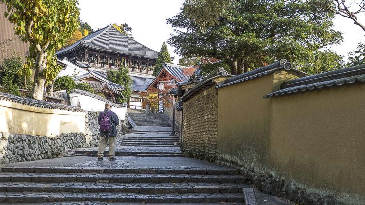 Nara Kasuga Taisha 15