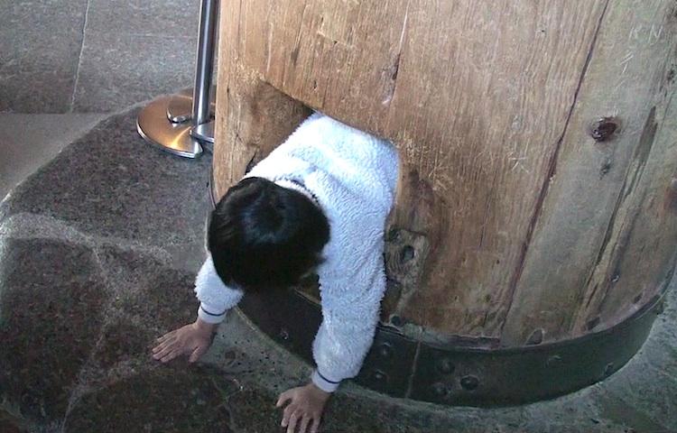 Nara Todai-ji 8
