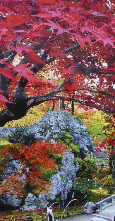 Arashiyama 3