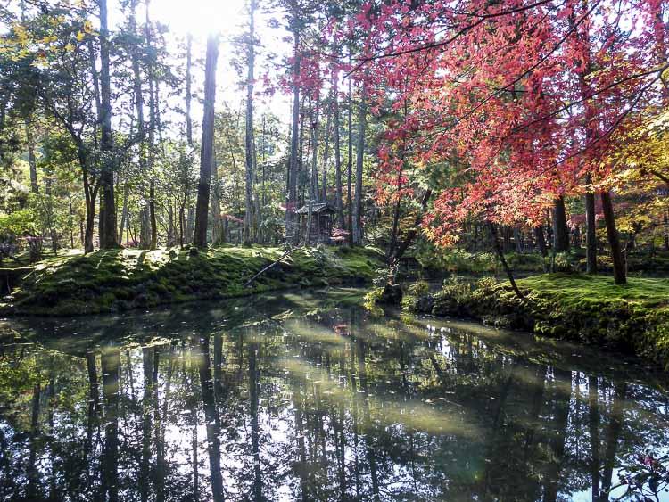 Arashiyama Kokedera 8