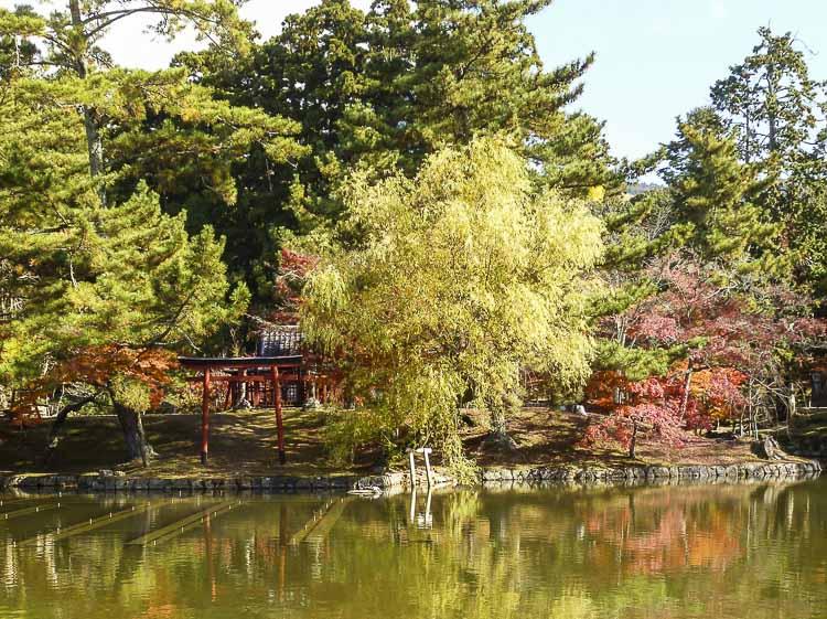 Nara 12