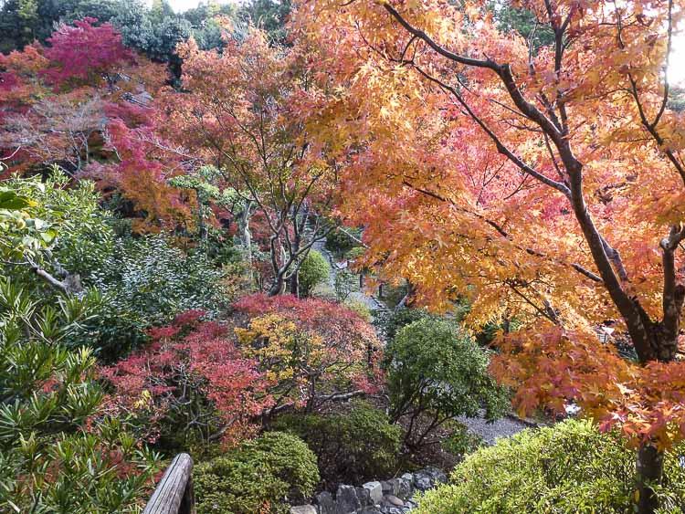Nara, jardin Isuien 4