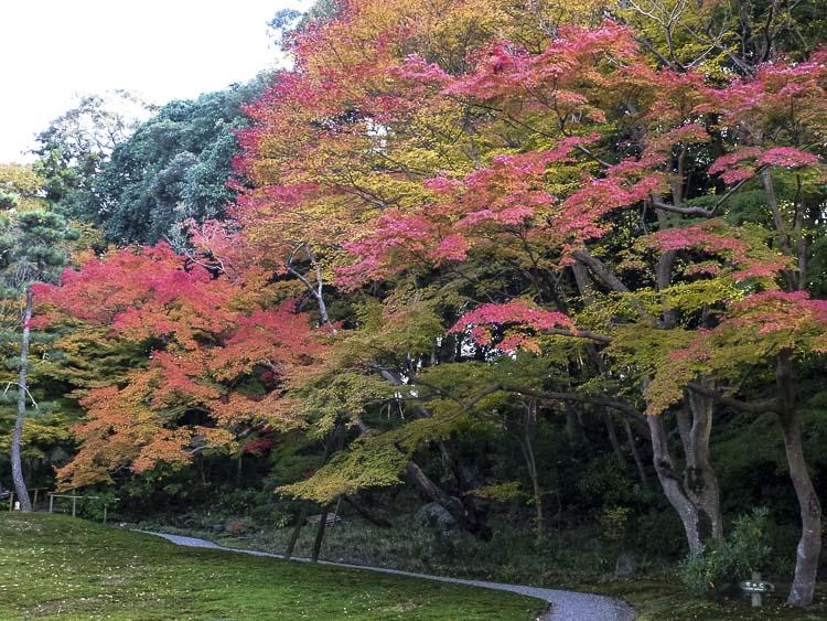 Nara, jardin Isuien 7