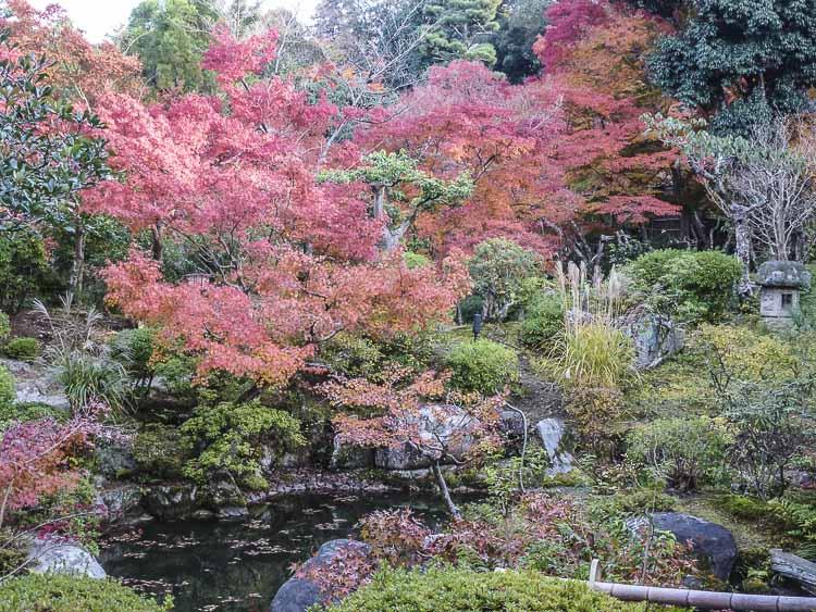 Nara, jardin Isuien 14