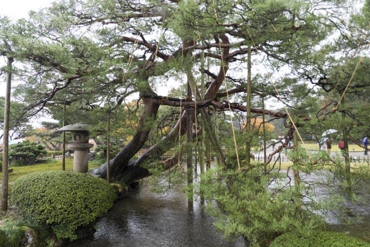 Kanazawa Kenroku-en 3