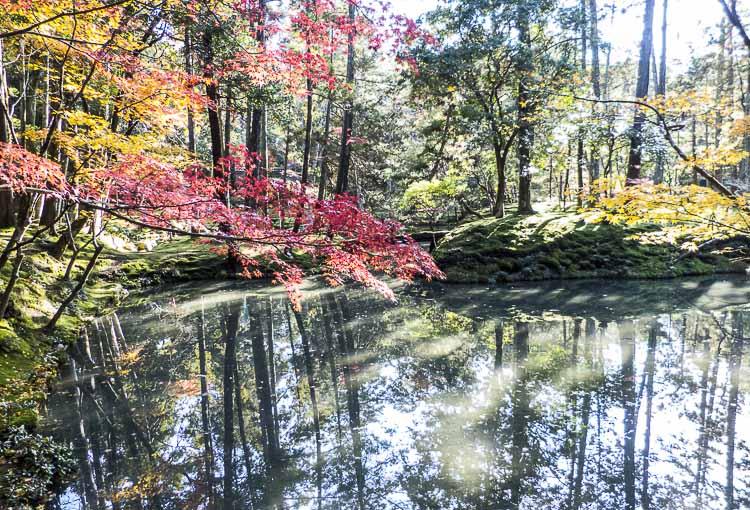 Arashiyama Kokedera 6