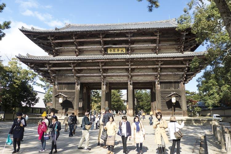 Nara 8