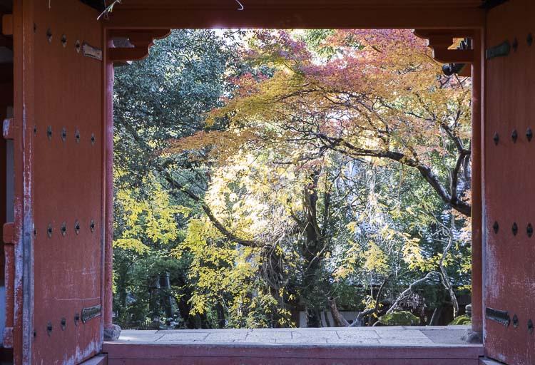Nara Kasuga Taisha 8