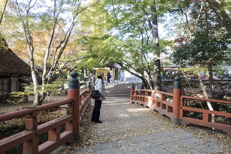 Nara Kasuga Taisha 11