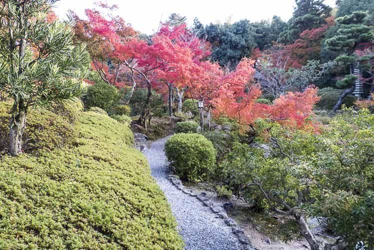Nara, jardin Isuien 2
