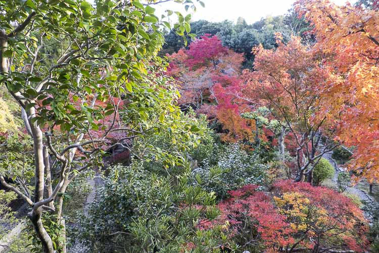 Nara, jardin Isuien 3
