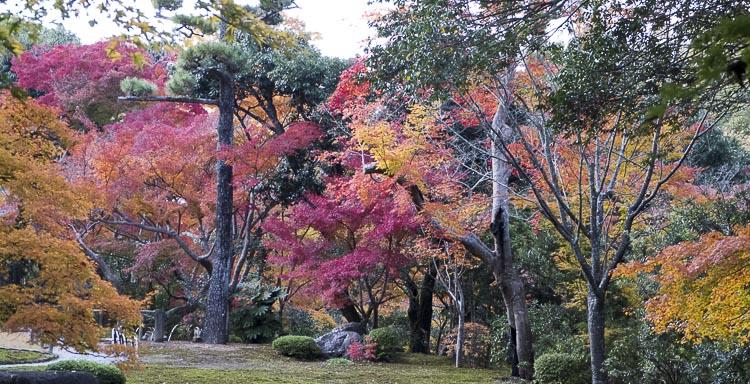 Nara, jardin Isuien 10