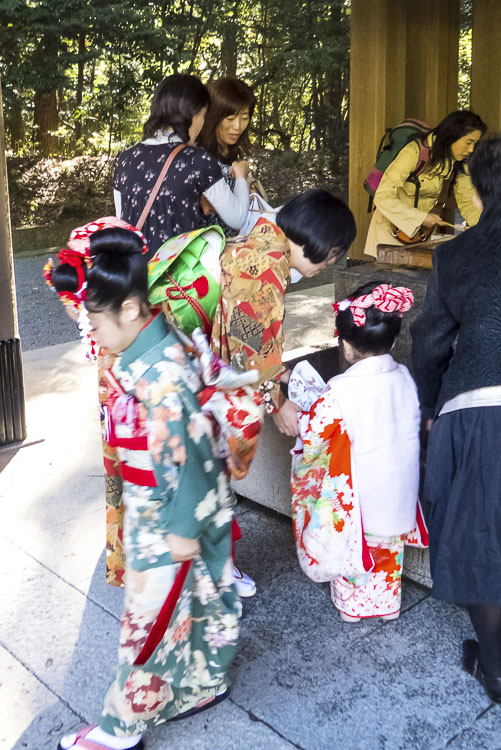 Meiji-jingu 6