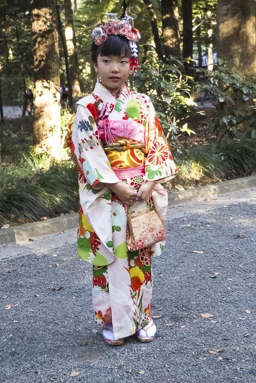 Meiji-jingu 13