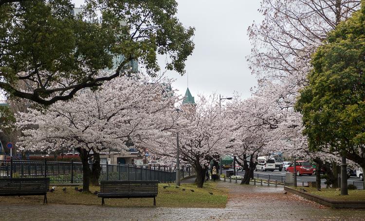Nagasaki 12