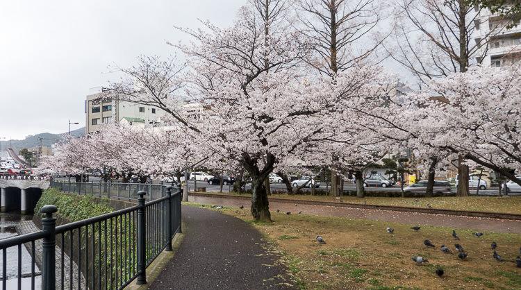 Nagasaki 14
