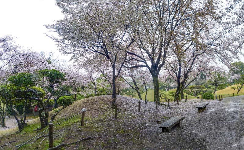 Kumamoto Suizenji 04