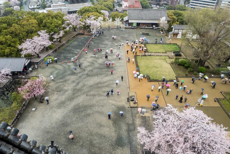 Kumamoto château 05