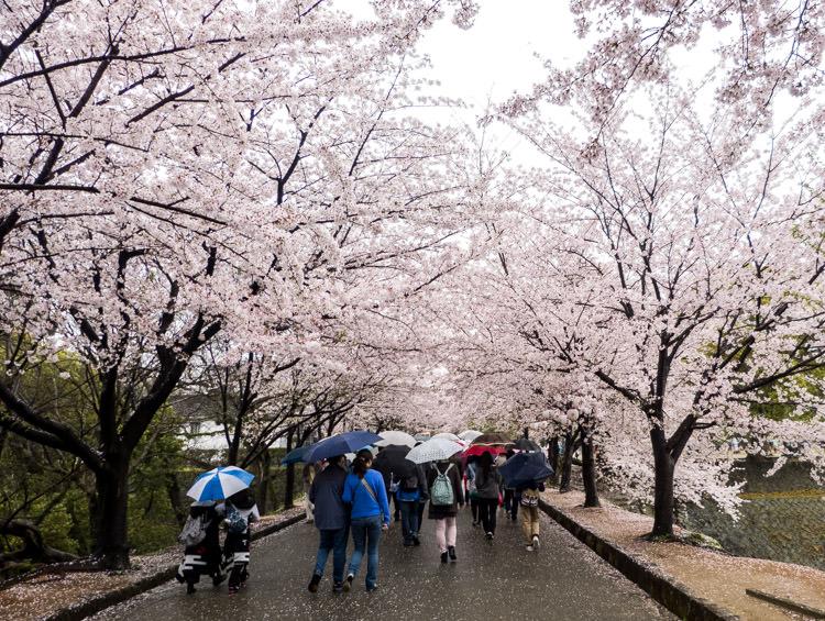 Kumamoto rues 03