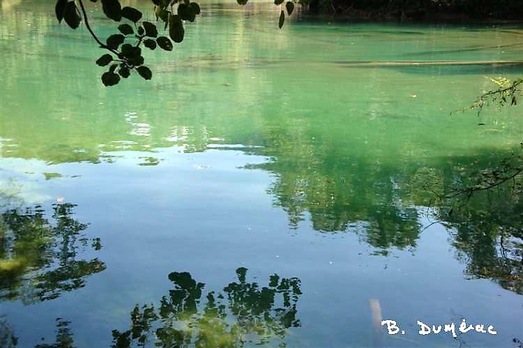 Agua Azul 4