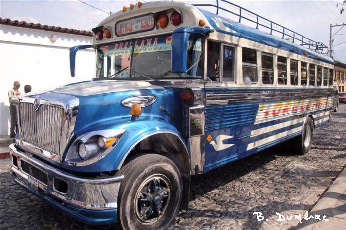 Bus scolaire converti en bus rutilant