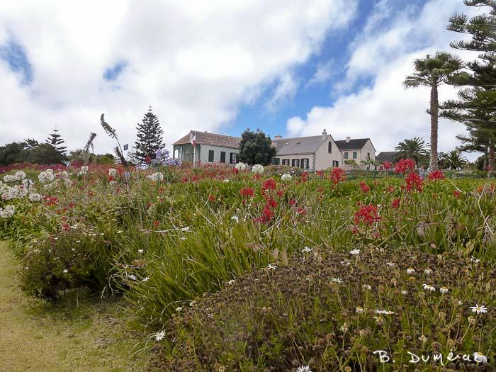 longwood, jardin 3